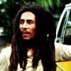 Bob Marley & The Wailers - Sun is shining (Jesse rose remix)