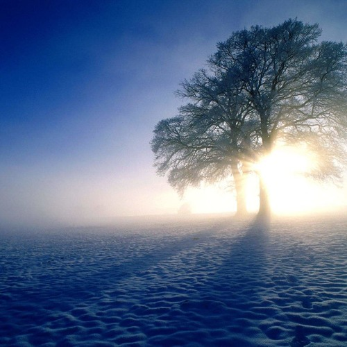 From dawn of winter until morning