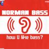 Norman Bass How U Like Bass 2  DJ Teal'c  Sandino 2k13 Hands Up Mashup .