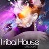 TRIBAL HOUSE 2013 - Dj Zax