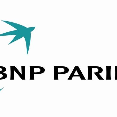 CORPORATE- video narration for Banque Nationale de Paris
