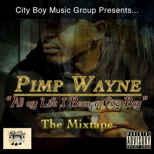 They Luv Us (Remix)- PimpWayne ft. Just Erica ( produced By MusiCreations MC )