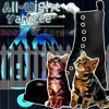 Download All - Night Yahtzee - Boots N Cats - 07 Chasing Pavements Mp3