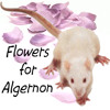 Part 2 Flowers for Algernon March 8, 10, 15, 19, 23, 25, half of 28