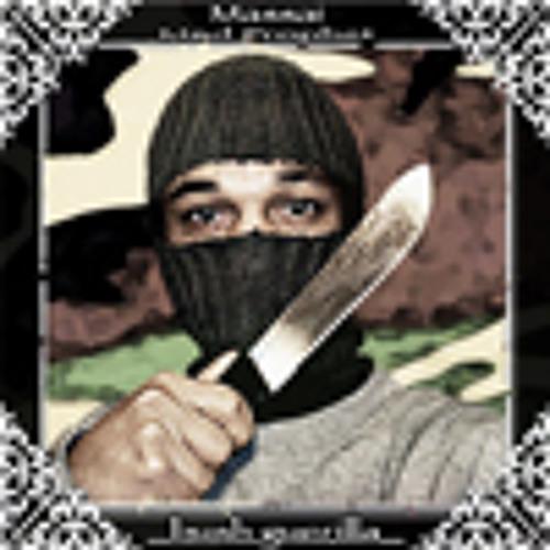 bush guerilla EP (2010)