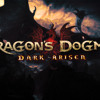 Dragons Dogma Coils Of Light  Cover by Haruto FireFlies