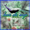 Folk Soundz - Heer Da Roop (Instrumental)