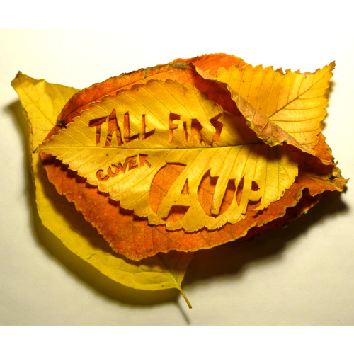 Tall Firs - All Tomorrow's Parties