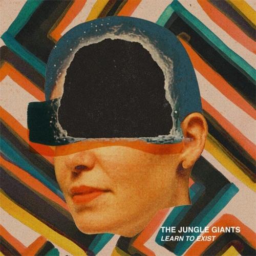 Skin To Bone - The Jungle Giants