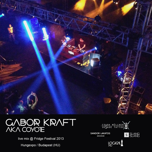 Gabor Kraft aka Coyote live mix @ Fridge Festival 2013