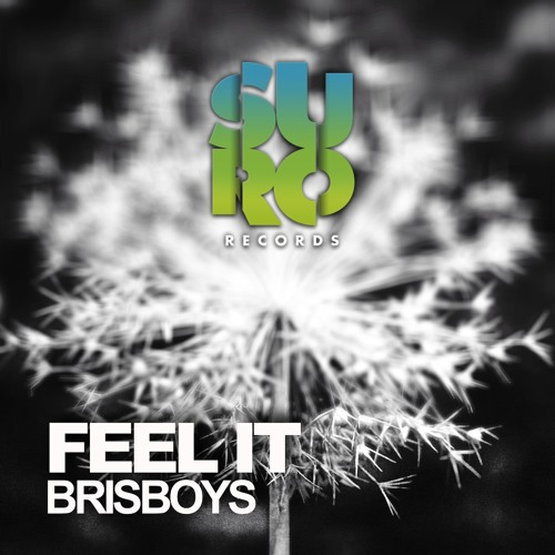 OUT NOW!!!!!  Brisboys - Feel It EP
