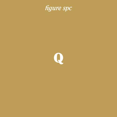Figure SPC Q - Johannes Heil