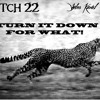 TURN DOWN FOR WHAT! (C22 & Black Ciney Remix)