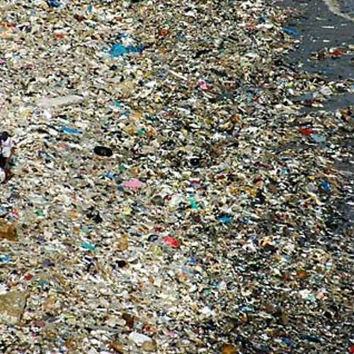 The gallery for --> Great Pacific Garbage Patch From The Air