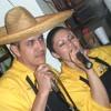 Super grupo colombia-cumbia gabacha148244 Portada del disco