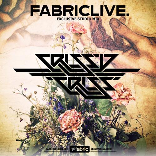 FabricLive Promo Mix - 80Min (Jan 2013)