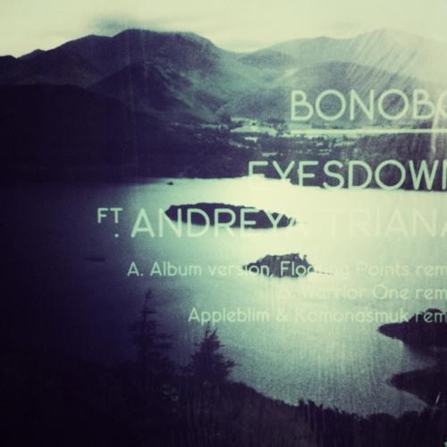Eyes Down by Bonobo featuring Andreya Triana [de Llera Remix] [NinjaJamm]