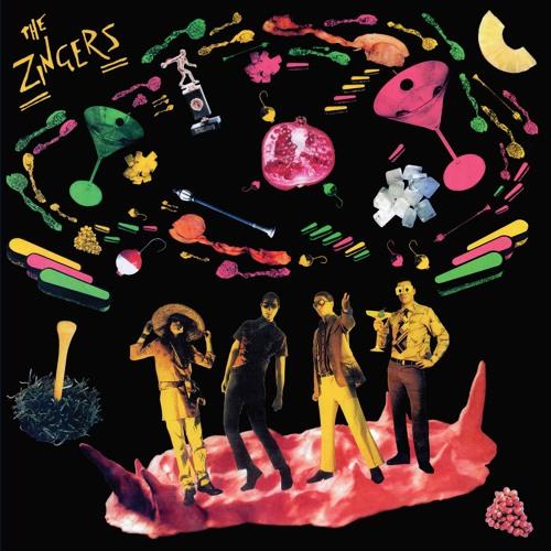 The Zingers - Husk Hole