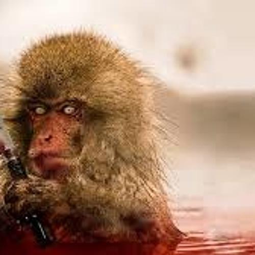 Ngarciaa - Killer (Minimal Monkey Rmx)