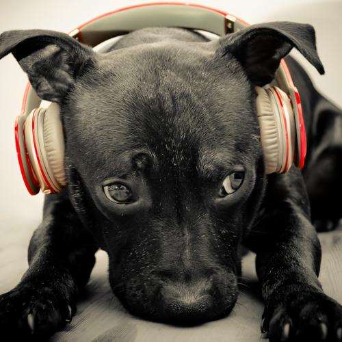 DJ KID -Classic House Mini Set Remix [GhostDJStudio]
