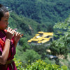 Traditional Bhutanese Flute Tune