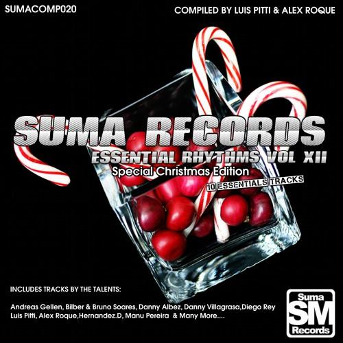 Luis Pitti - Nature (Original Mix) [Suma Records]