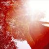 oakwood stream - album version