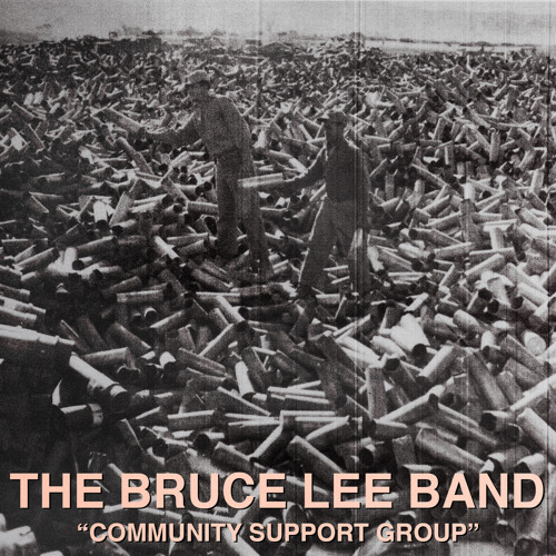 BRUCE LEE BAND - Ms. Me