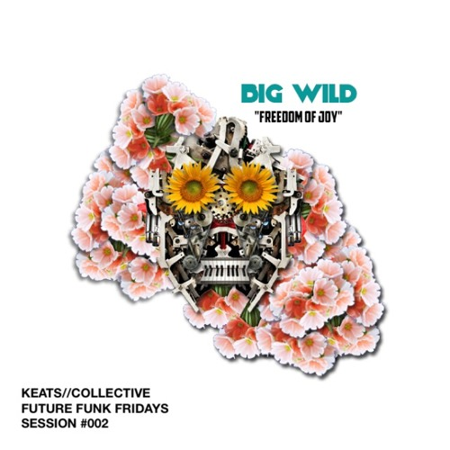 Big Wild - Freedom of Joy
