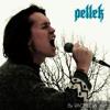 PELLEK's 4 OCTAVE VOCAL RANGE (a2 C6)