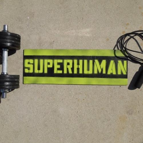 HIXXY & RE-CON SUPERHUMAN