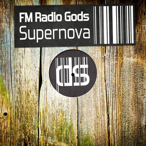 FM Radio Gods - 1234 [ SoundCloud Clip ]