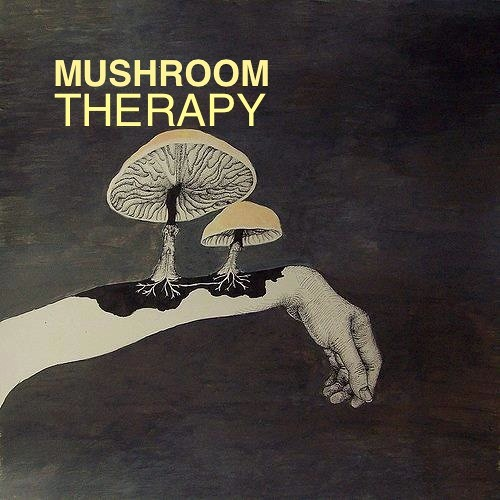 KROMAGON - Mushroom Therapy (Original Mix) SC Preview