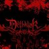 Yash - Thunderhorse (Dethklok Cover) - 01