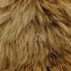 HVOB Lion Stimming Rmx