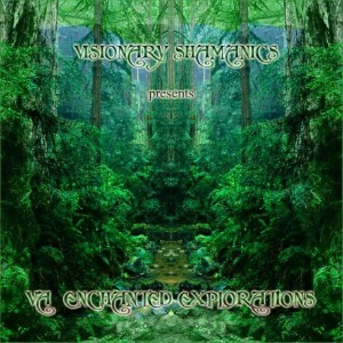Shadowls - Chronicle Of Mystery [Visionary Shamanics - Enchanted Explorations] 2012