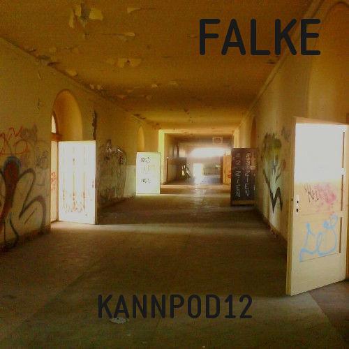 KANNPOD12 - FALKE