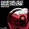 David Mel - True Love (Saleem Razvi Goin Deep Mix)