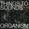 Radiobeitrag SRF2 Gespräch und Musik mit THINGS TO SOUNDS