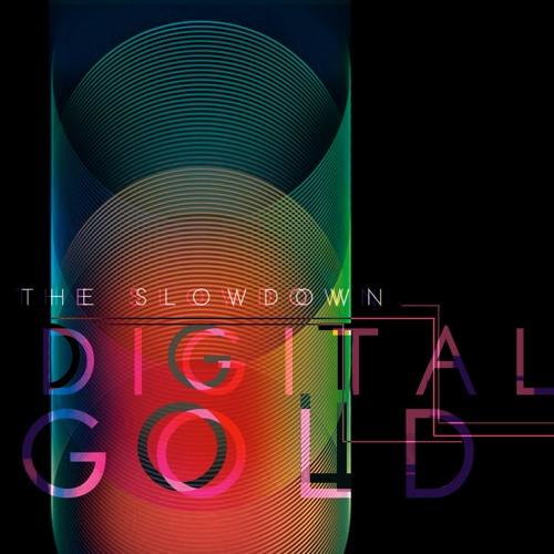 The Slowdown - Digital Gold