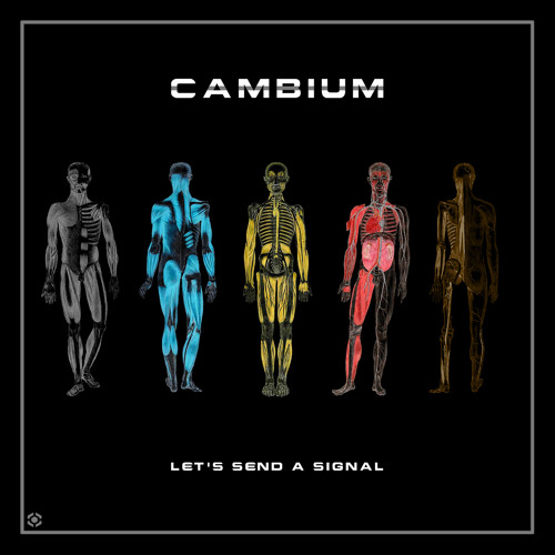 Cambium - Salton (long version)