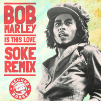 Bob Marley - Is This Love (Soke Remix) **FREE DOWNLOAD**