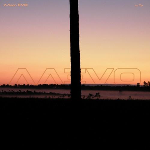 AAron EVO - Lo.Tek (©2013)Preview