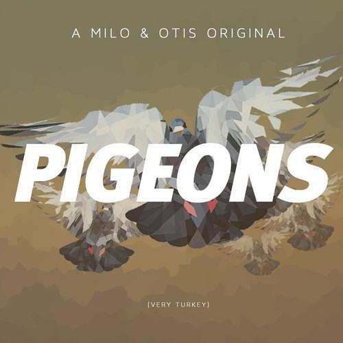 Pigeons by Milo & Otis