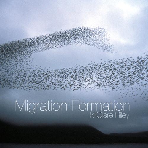 Migration Formation