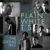 Plain White T's — The Giving Tree