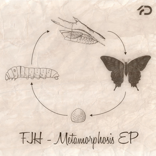 FJH - Metamorphosis EP (4D Exclusive)