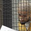 Orange County 'Homeless Killer' Found Dead in Jail Cell