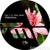 Paul C & Paolo Martini - Waterdrops (Original Mix)