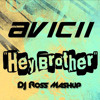 Avichii Vs. Shwan - Hey Brother Go ( Ross Mash - Up )